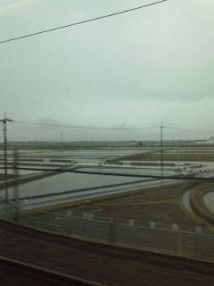 GWも明けて雨