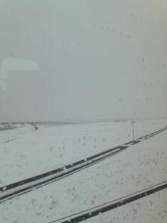 凄い雪でした(@_@)